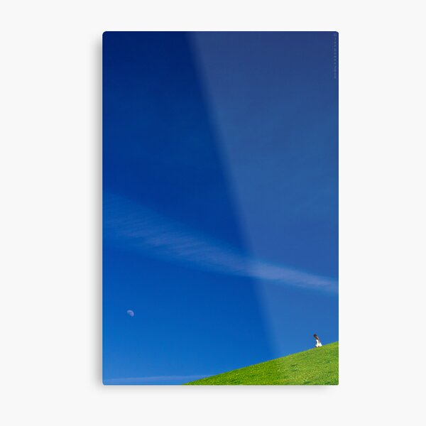 the girl on a hill Metal Print