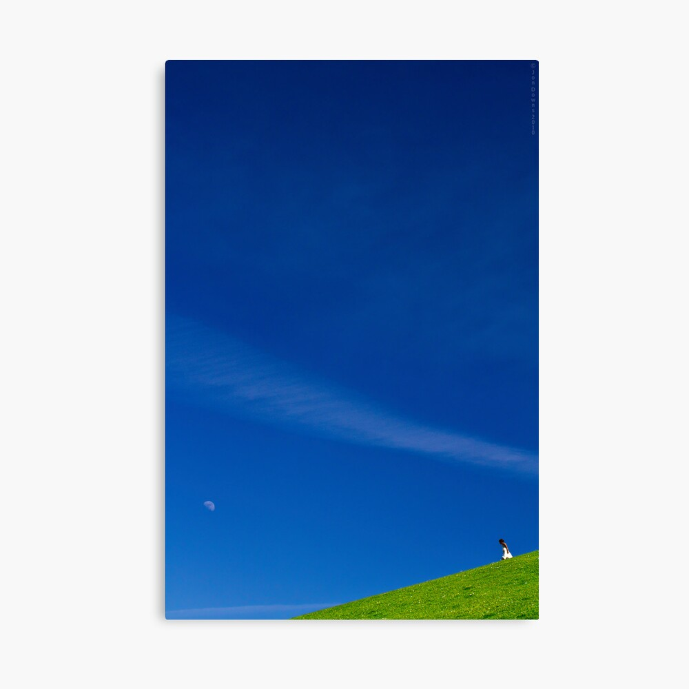 the girl on a hill Canvas Print