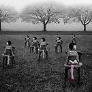 The Majority... by Karen  Helgesen