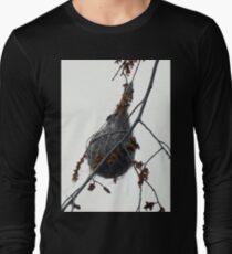 Oriole Nest Long Sleeve T-Shirt