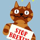 NDVH Stop Brexit by nikhorne