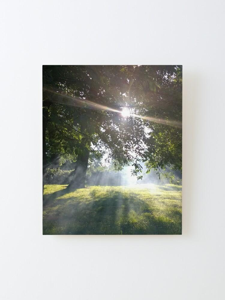 Alternate view of M.I. #12 |☼| Smoky Tree Sun Rays - Portrait Shot (Pearson Park) Mounted Print