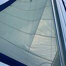 Sail by abryant