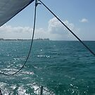 Sailing to Paradise island by Adria Bryant