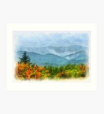 Summer Scene-On Roan Mountain Art Print