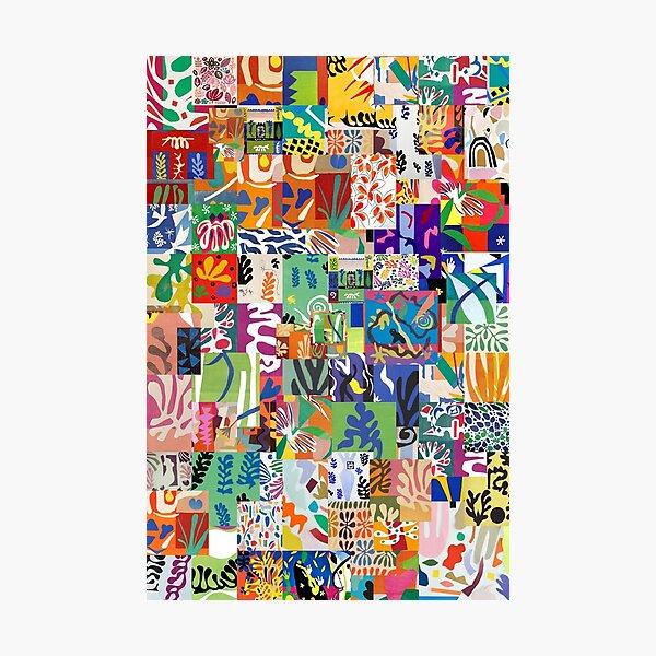 Henri Matisse Cutouts Photographic Print