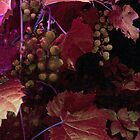 The Blood of the Grape by RC deWinter