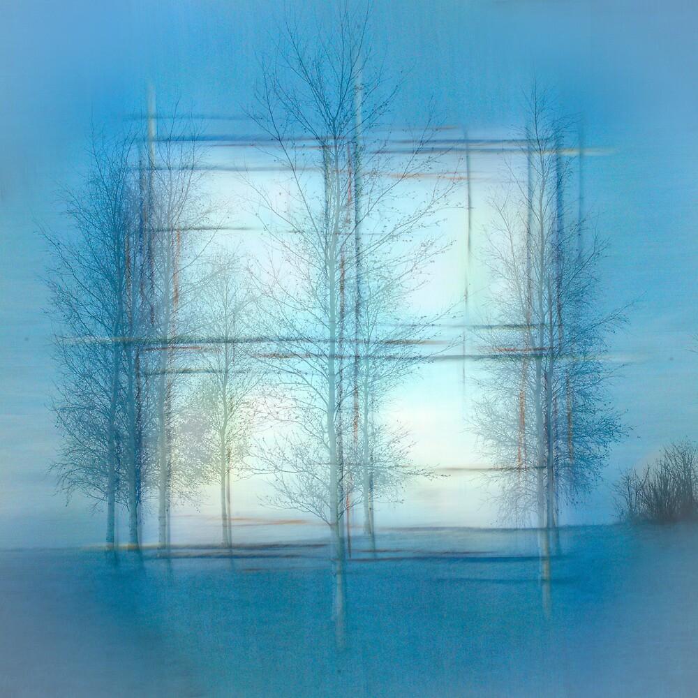 Winter Window by finnarct