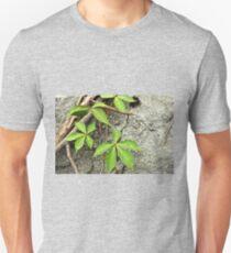 Virginia Creeper Vine - Parthenocissus quinquefolia Unisex T-Shirt