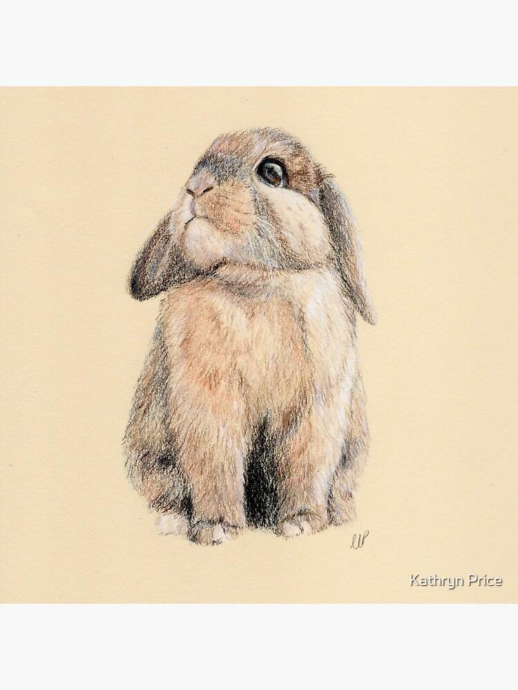 Cute Little Peter Rabbit by KathrynKathryn