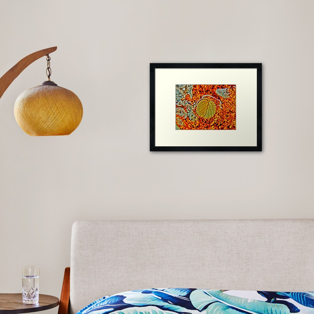 Floating Leaf Framed Art Print
