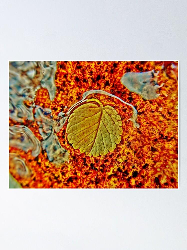 Alternate view of Floating Leaf Poster