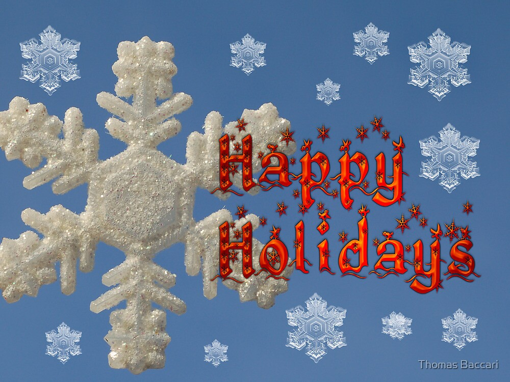 Happy Holidays Card by TJ Baccari Photography
