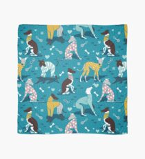 Greyhounds dogwalk // turquoise background Scarf
