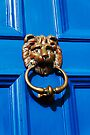 Lion door knocker, The Chantry, Canterbury by David Carton