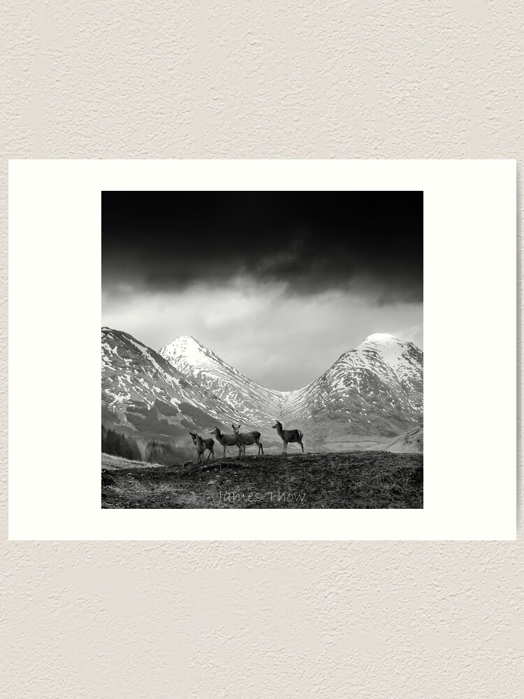 Alternate view of In the hills Art Print