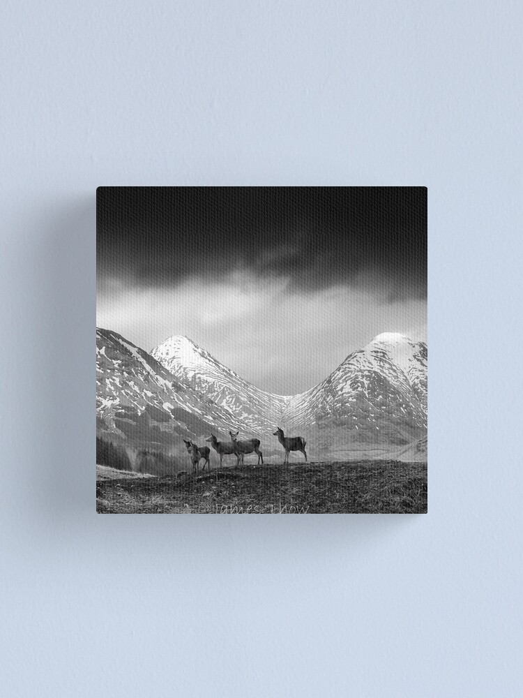 Alternate view of In the hills Canvas Print