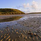 Cornwall: Sand Ridges at Daymer Bay by Rob Parsons