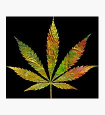 Marijuana Leaf Abstract Autumn Photographic Print