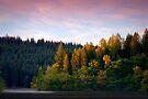 Loch Ard, first light... by David Mould