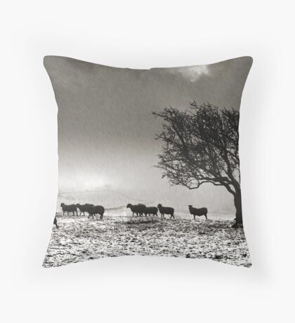In search of food... Throw Pillow