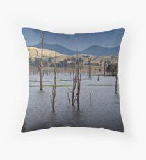 Lake Somerset - upper reaches Throw Pillow