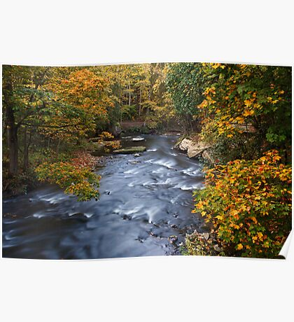 River amongst autumn trees Poster
