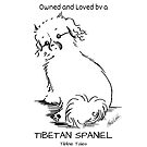 Owned and Loved by a Tibetan Spaniel by Monica C. Webster