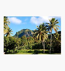 Cook Islands - Rarotonga highlands Photographic Print