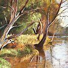 Wimmera River by Lynda Robinson