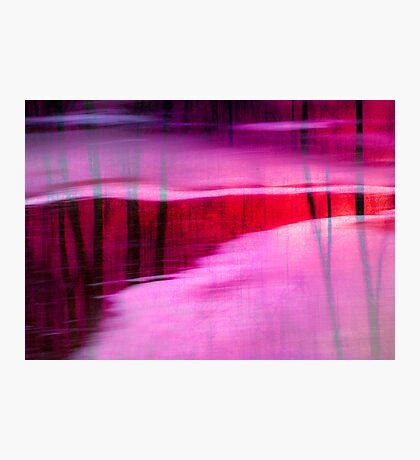 Ice on Red River Photographic Print