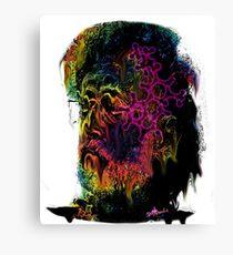 Terrance Mckenna LSD  Canvas Print