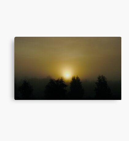 VSOP. ❤❤❤❤❤❤ .Chill out  -  sunrise . Sweden. Brown Sugar Story. Favorites: 3 Views: 1021. . Canvas Print