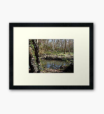 The Wishing Pool Framed Print