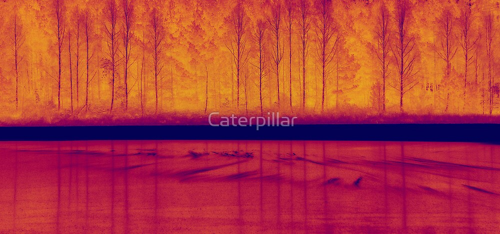 Put out my fire by Caterpillar