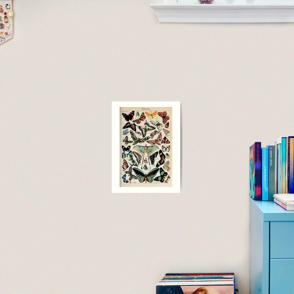 Adolphe Millot papillons pour tous Art Print