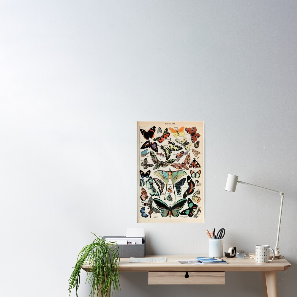 Adolphe Millot papillons pour tous Poster