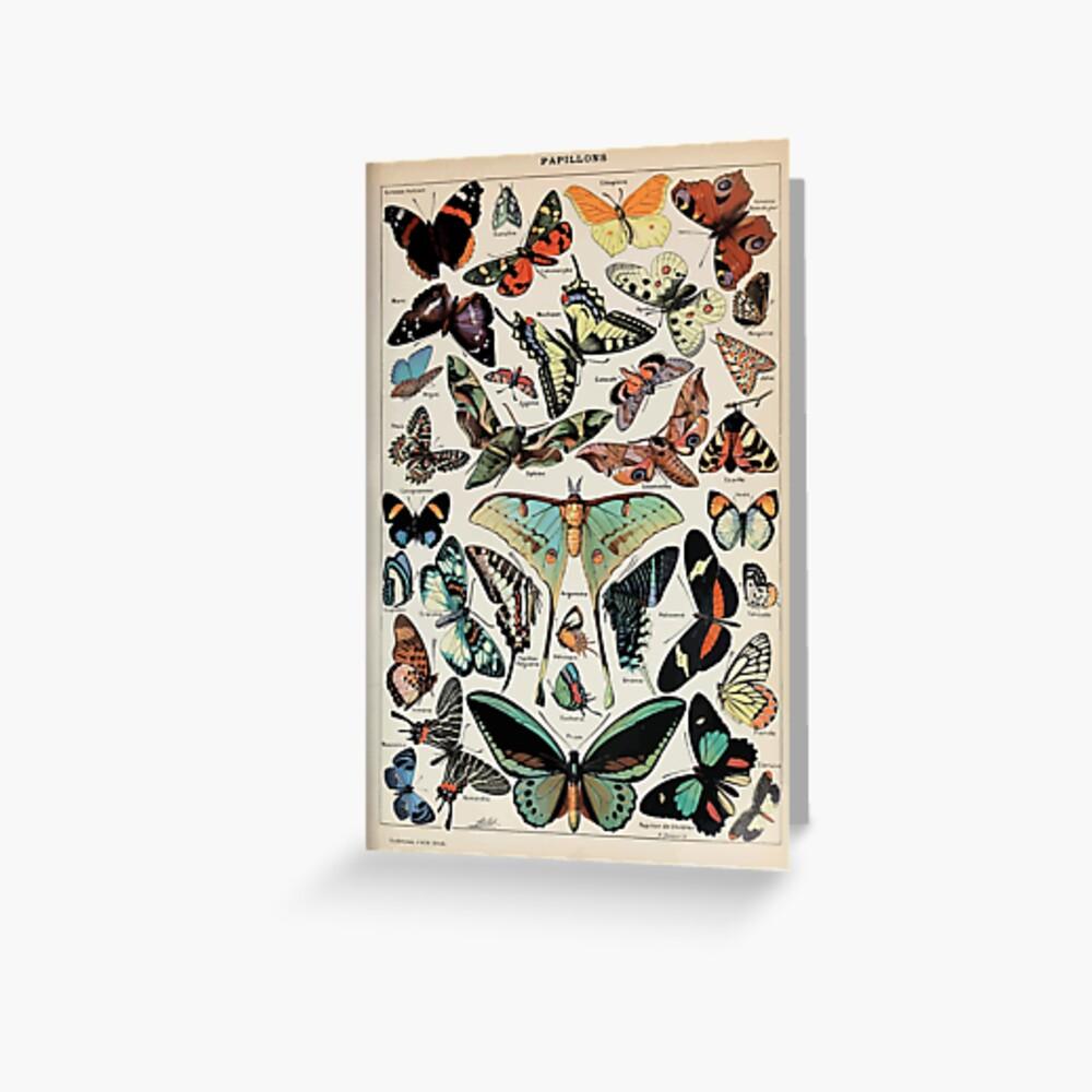 Adolphe Millot papillons pour tous Greeting Card