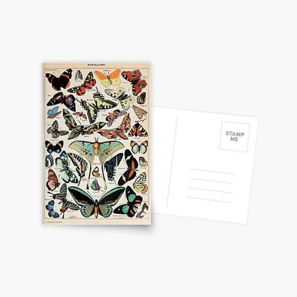 Adolphe Millot papillons pour tous Postcard
