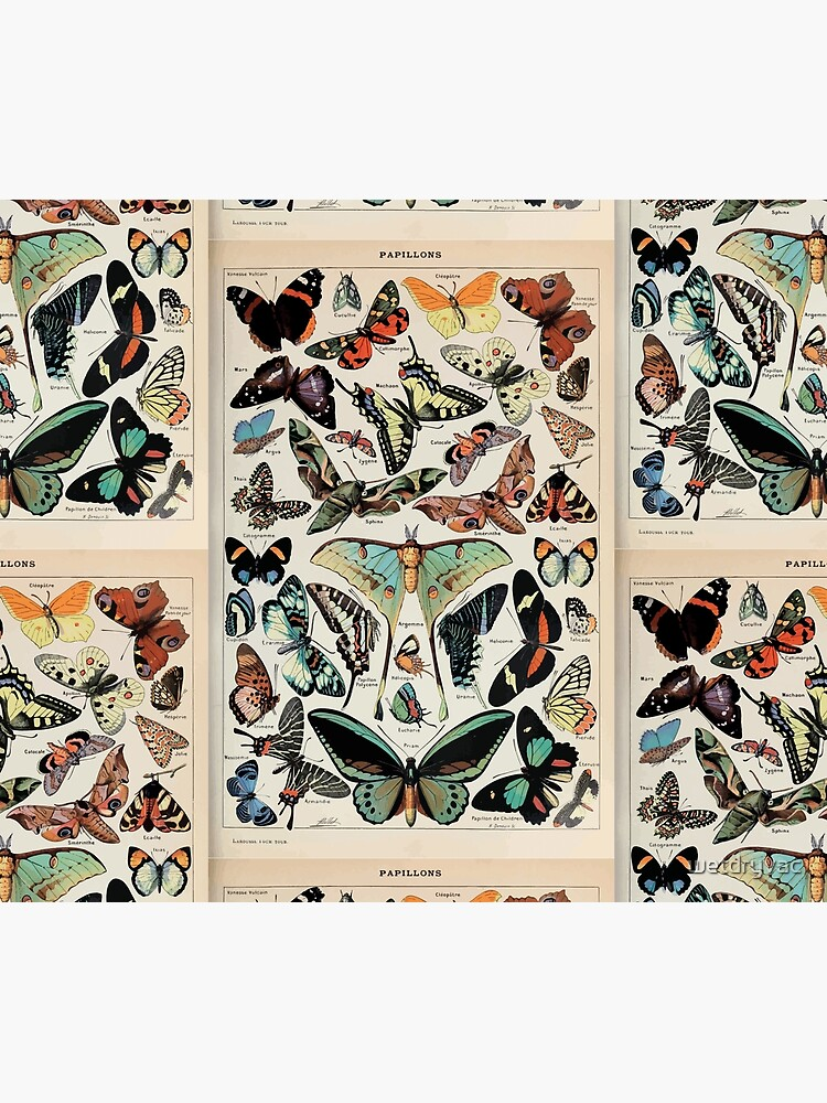 Adolphe Millot papillons pour tous by wetdryvac
