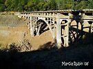 Bridge over Lake Shasta - California by Marcia Rubin