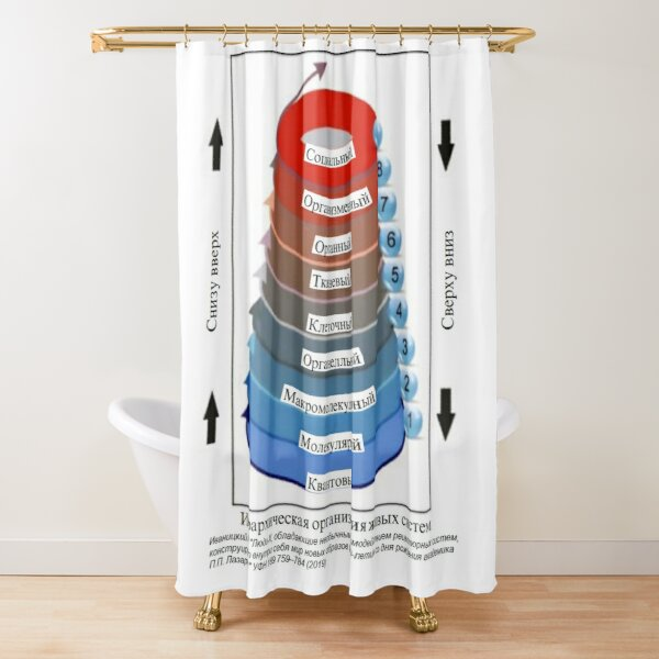 #Hierarchical #Organization of #Living #Systems, Synesthesia, Perceptual Phenomenon,  Synesthetes Shower Curtain