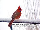 Praise the name of God with a song by WalnutHill