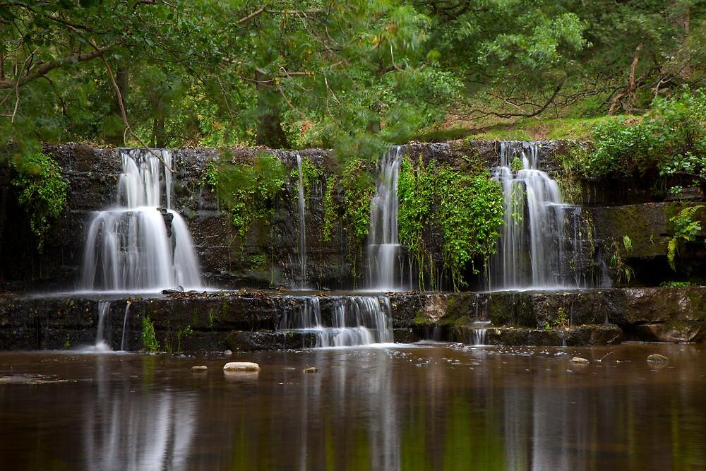 Waterfall, Lofthouse. by Nick Atkin