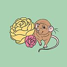 Rat and Roses Agouti by Holly Wells . Sweet Illustrations