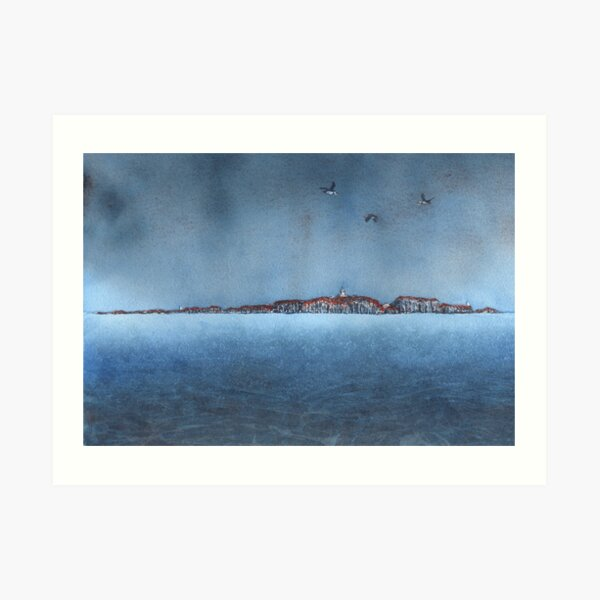 Isle of May with Puffins, July 2019 Art Print