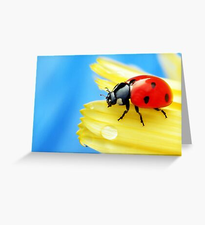A bright little lady.. Greeting Card
