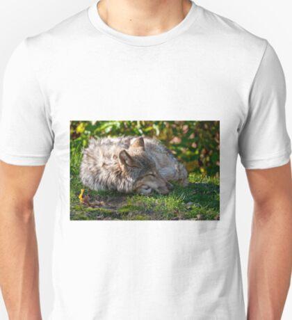 Sleeping Timber Wolf T-Shirt