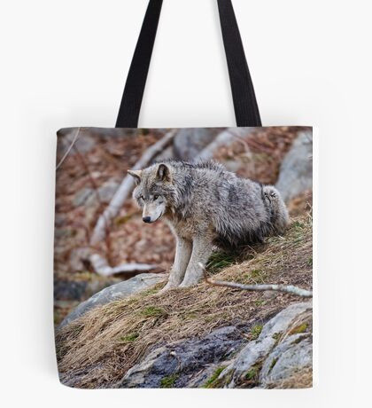 Timber Wolf sitting on Rocks Tote Bag