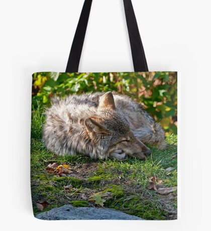Sleep Well my Friend Tote Bag